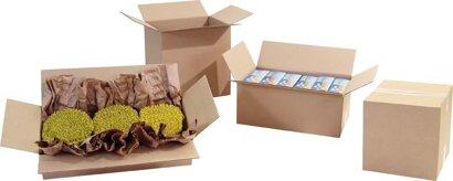 1-wellige Falt-Kartonage für Güter bis 30 kg