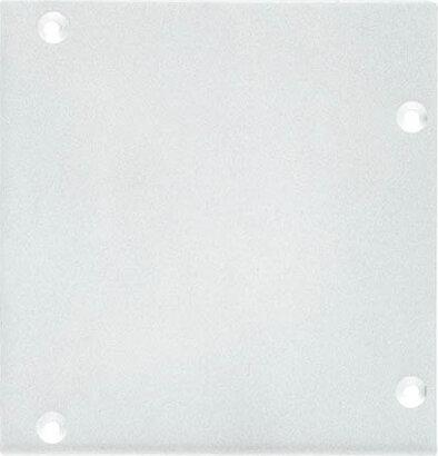 Plexiglas-Grundplatte