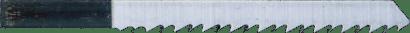 Stichsägeblatt Holz FW30P
